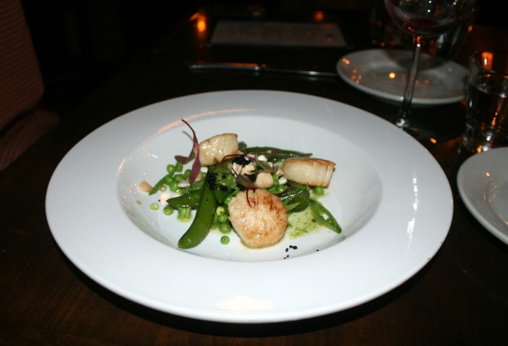 victory 44 scallops